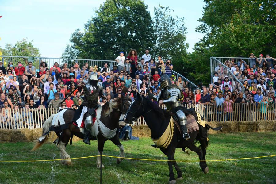 The Medieval Festival