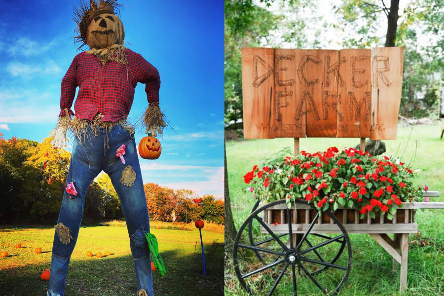 In Person Halloween Events And Activities In Nyc 2020 Pumpkin Picking Ghost Tours And More