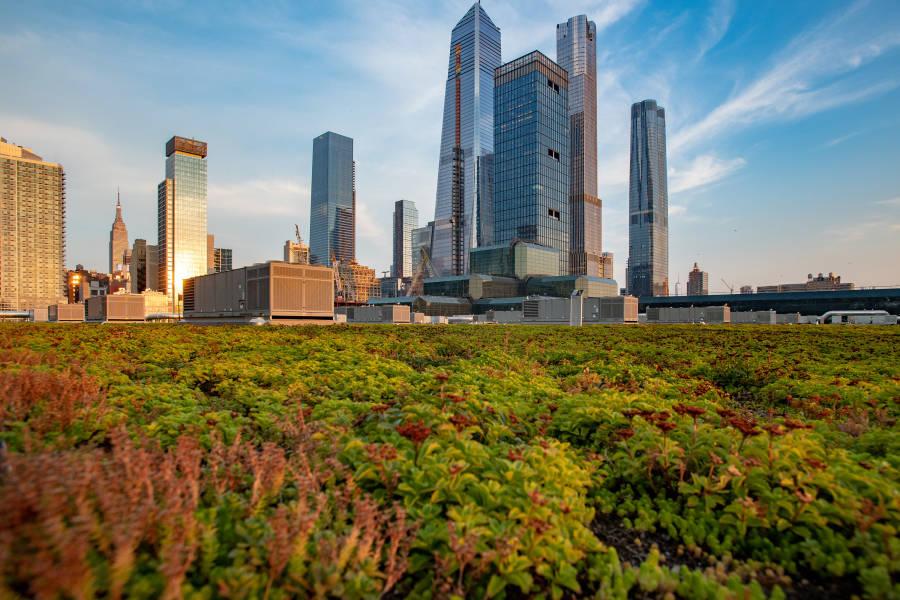 Javits_Center-Manhattan-NYC-Rooftop-Sustainability