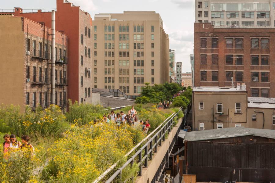 Highline, NYC Highline, Chelsea Highline, High Line, Highline Flowers