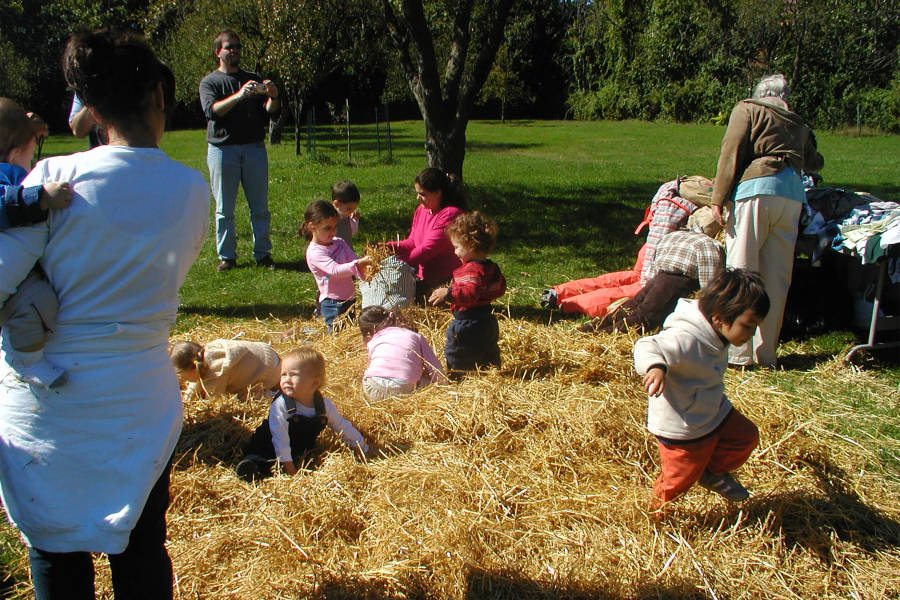 Apple Festival, Queens County Farm Museum. Queens Farm, NYC Farm, Hay, Kids Playing in Hay, Kid Friendly Farm NYC,