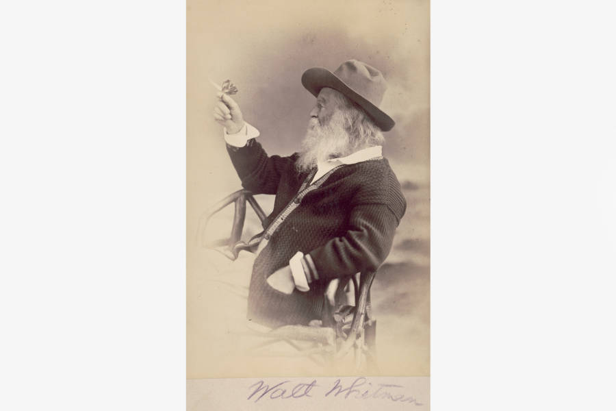 Walt Whitman, Bard of democracy, Morgan Library,