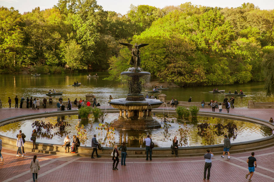 Image result for central park nyc