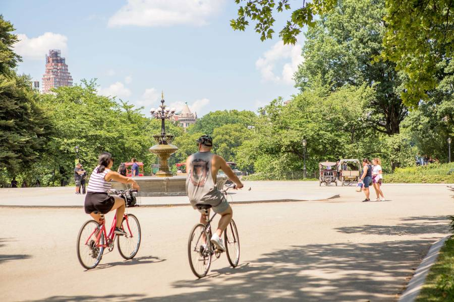 Guide to Biking in New York City