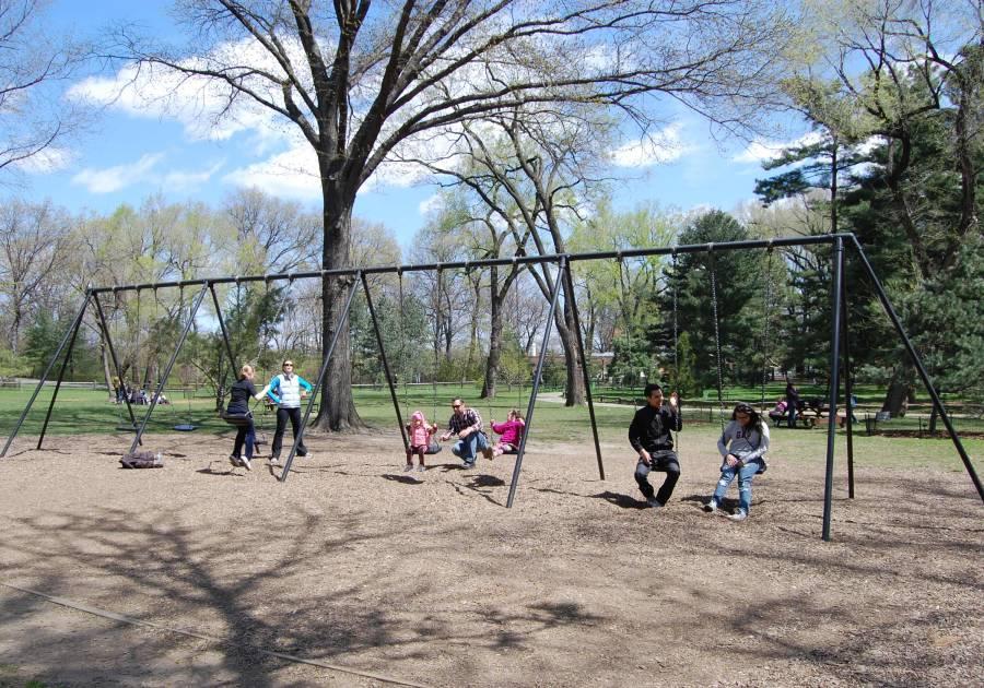 pinetum playground, park