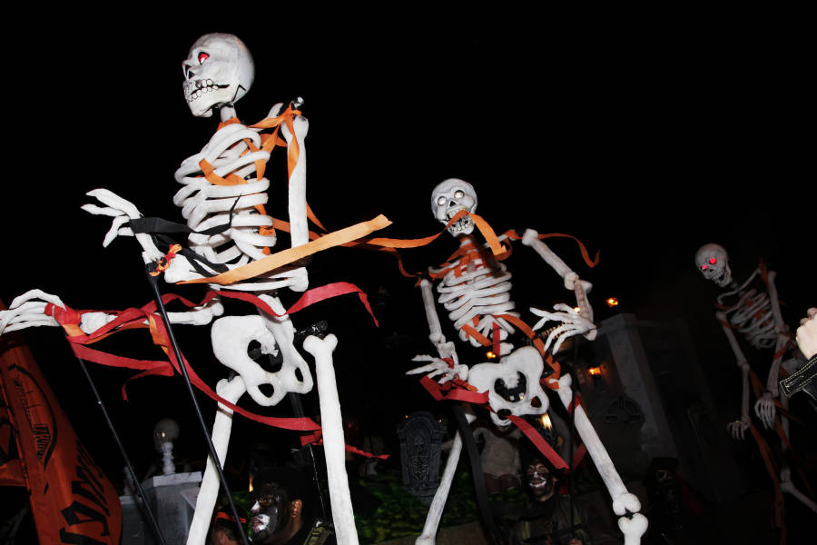 Things To Do For Halloween In NYC   NYCgo