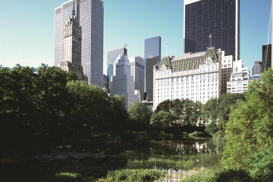 the plaza, central park view