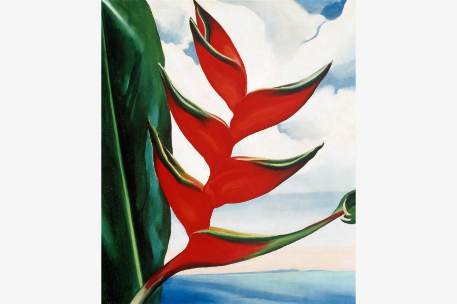 Georgia O'Keeffe painting, nybg, flower