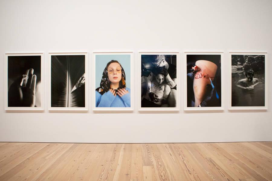 Whitney Biennial, Elle Perez