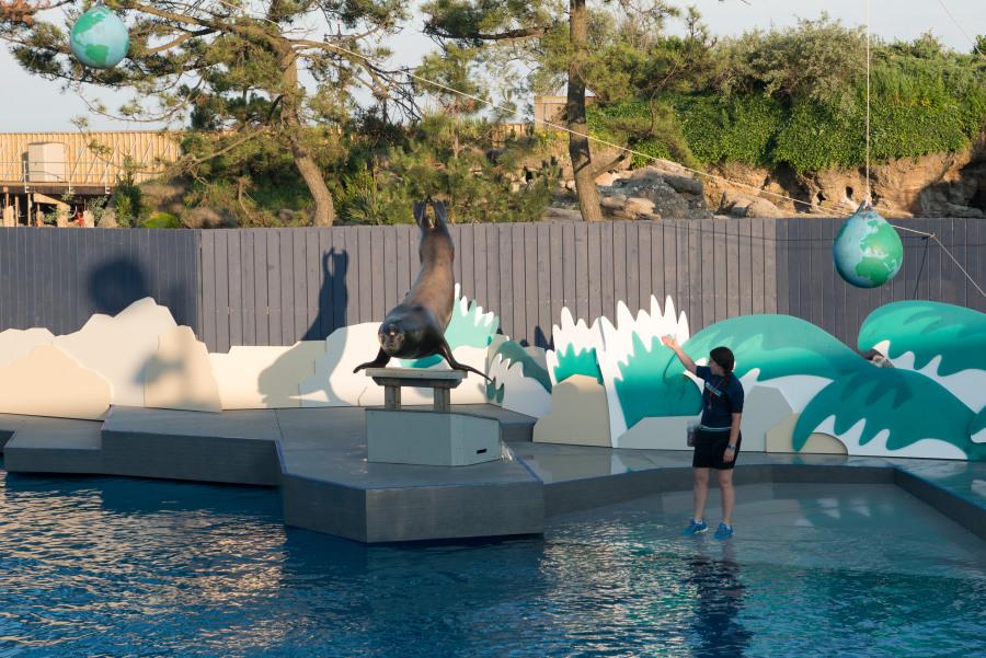 New York Aquarium in Coney Island