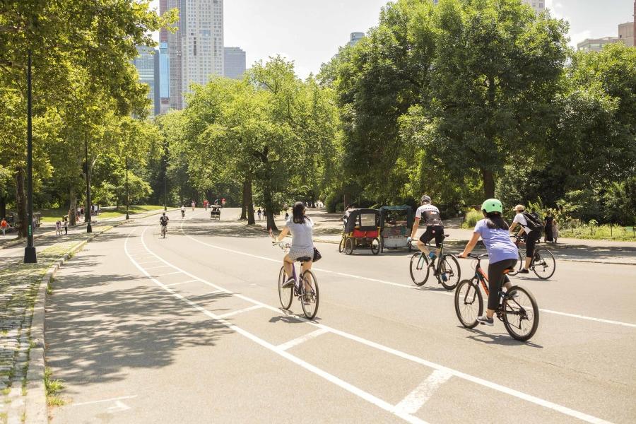 Biking, Central Park
