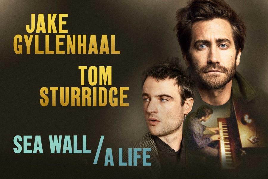 Sea Wall, A Life, key art