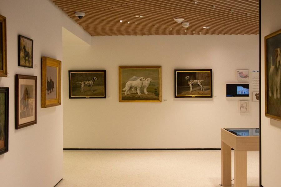 Dog museum interior, paintings